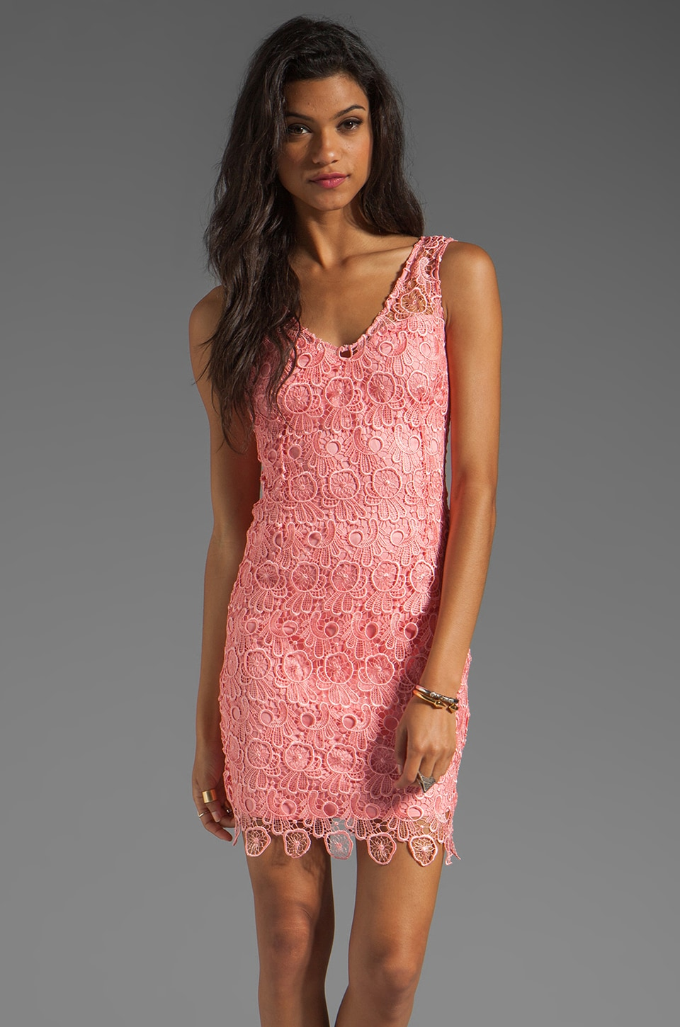 BB Dakota Allium Lace Dress in Pink Lemonade