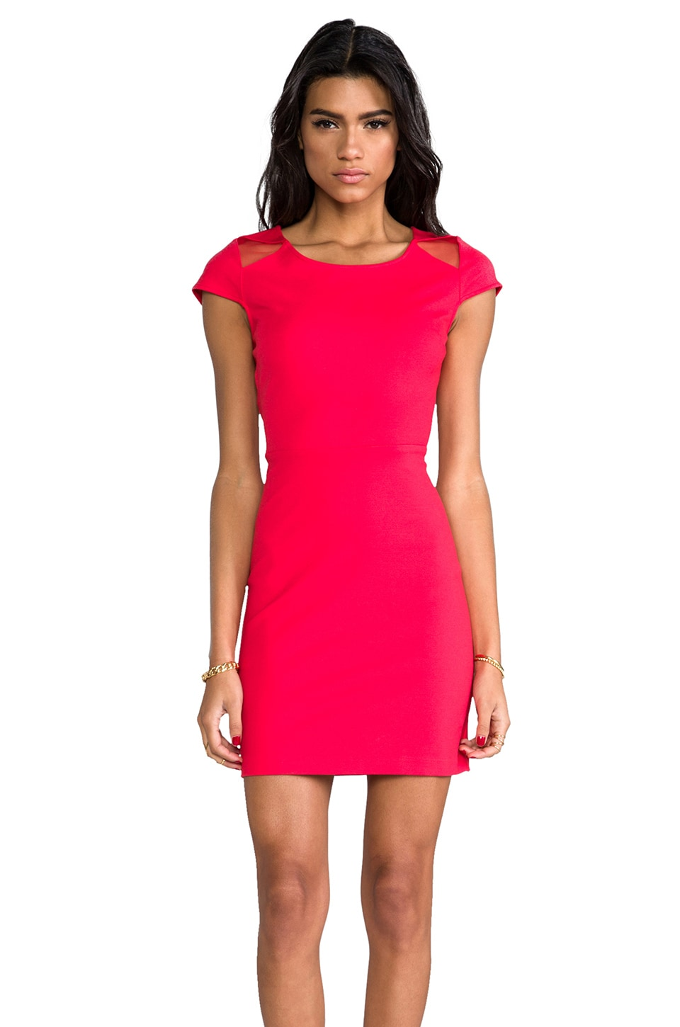 BB Dakota Edgemont Dress in Watermelon