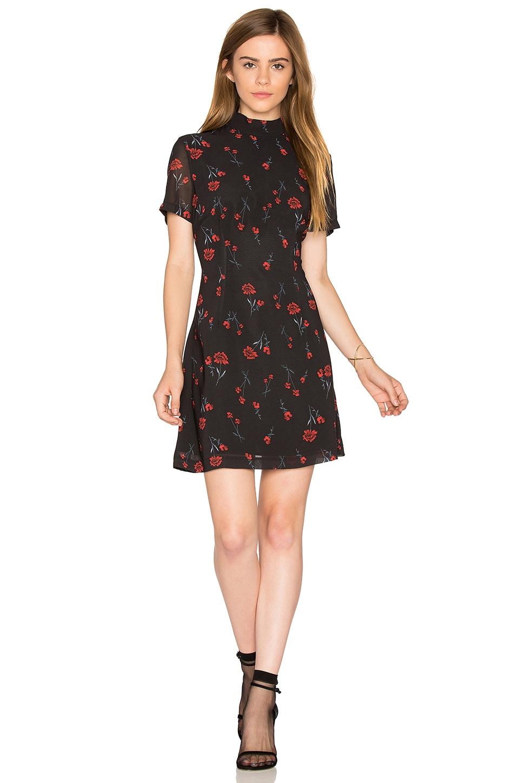 Benhill Dress by BB Dakota