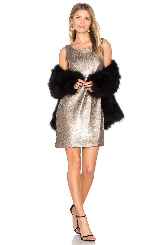 Penley Dress by Bb Dakota