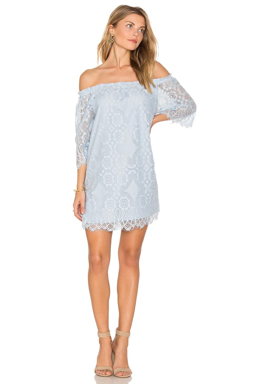 Halden Dress by Bb Dakota
