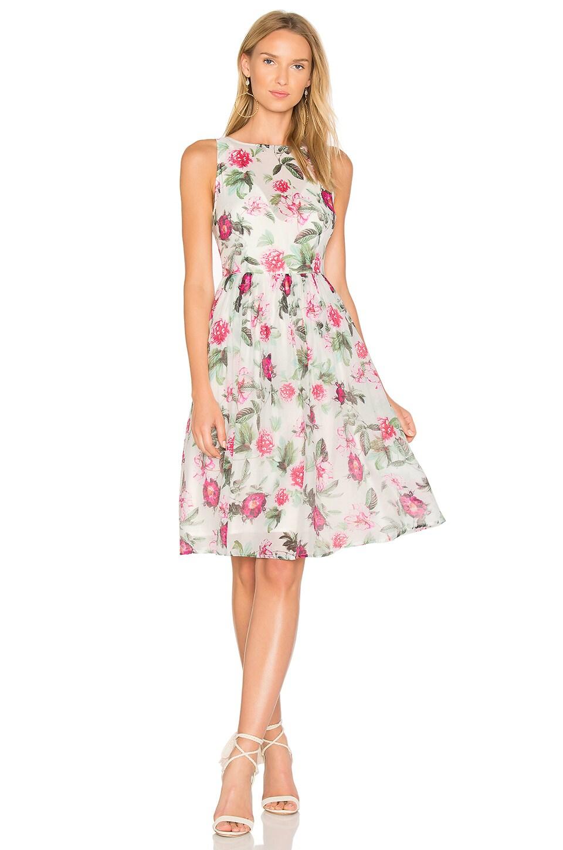 RSVP by BB Dakota Dehlia Dress by BB Dakota