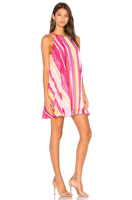 Summerlyn Dress by Bb Dakota