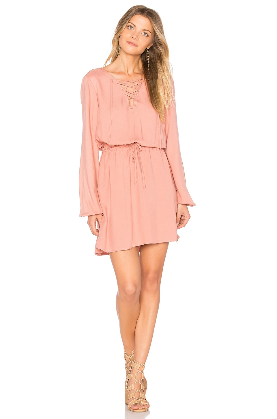 BB Dakota Jack by BB Dakota Char Dress in Rose Dawn