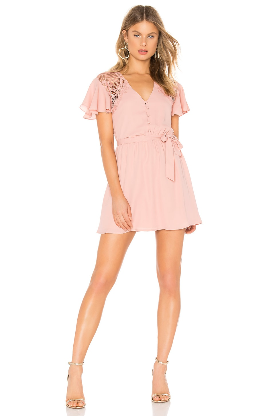 BB Dakota First Impressions Dress in Pink Lemonade