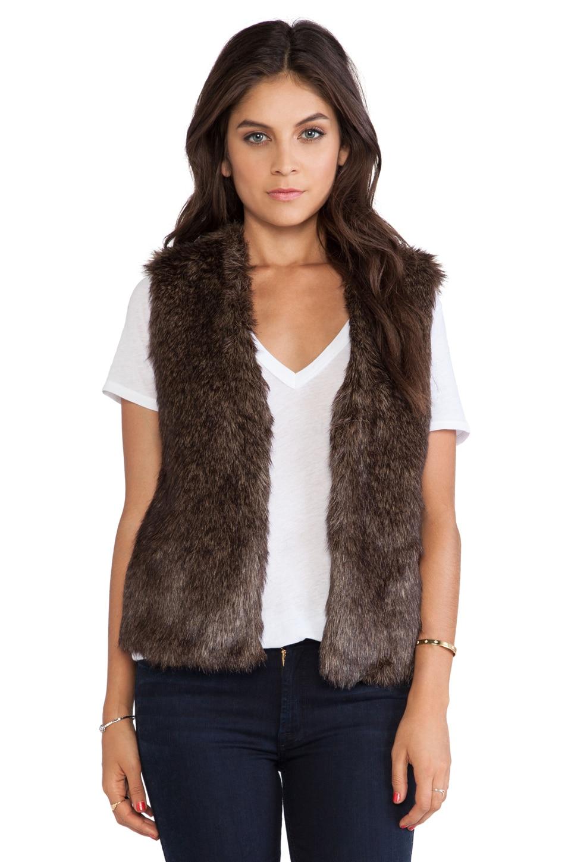 BB Dakota Briseida Faux Fur Vest in Brown & Black