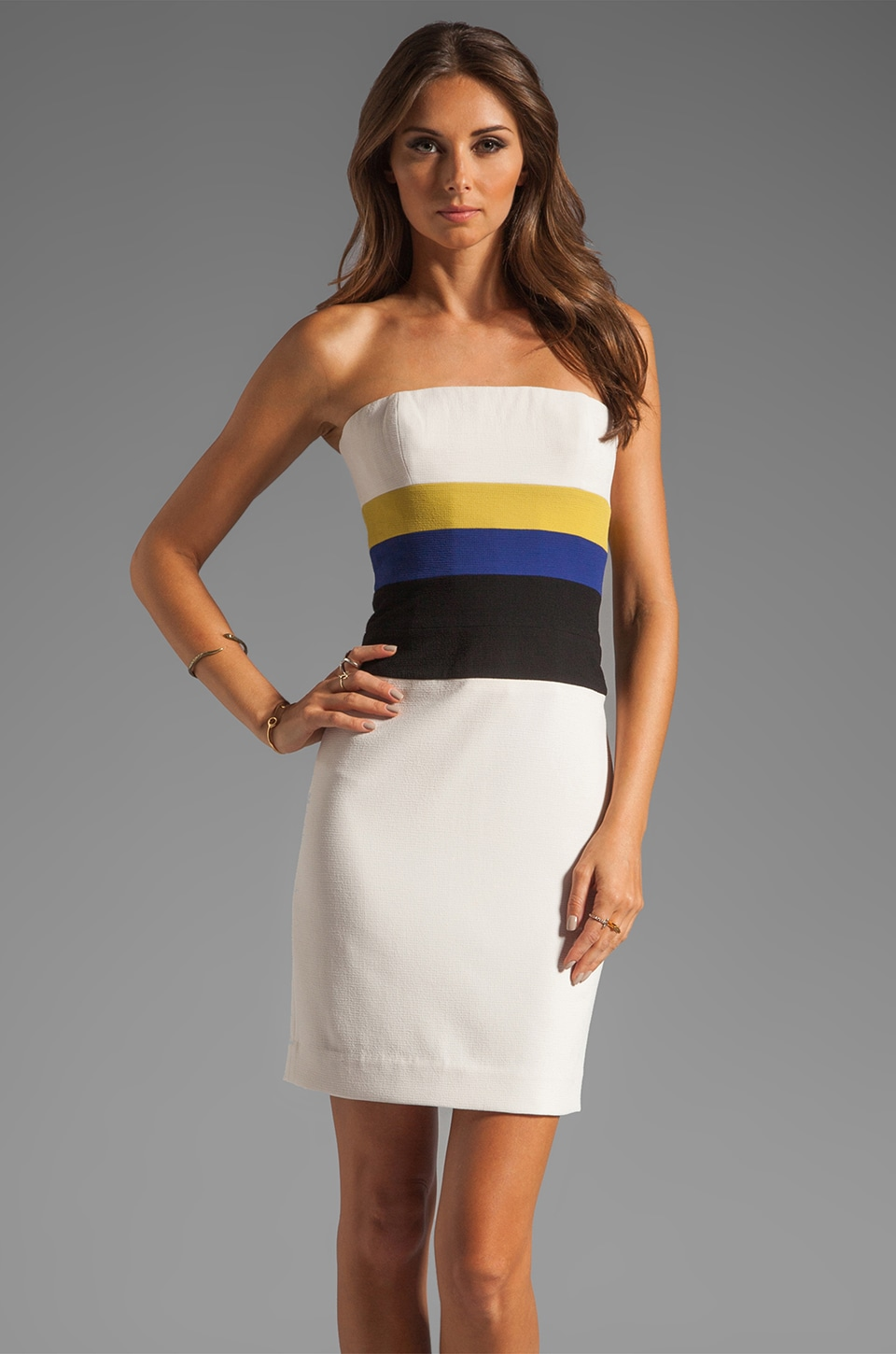 BCBGMAXAZRIA Bodycon Dress in Canvas Combo