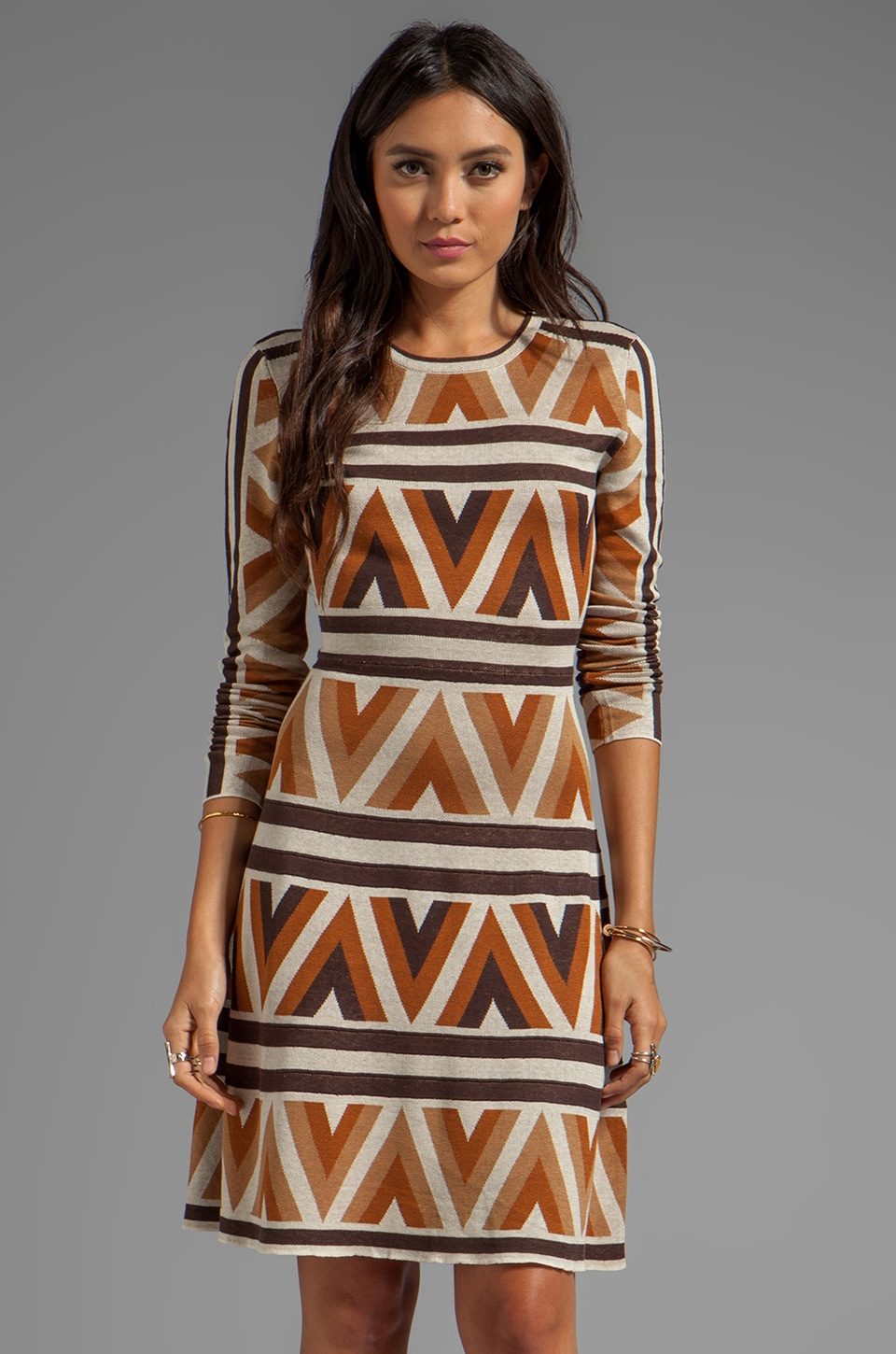 BCBGMAXAZRIA Long Sleeve Printed Dress in Camel Combo