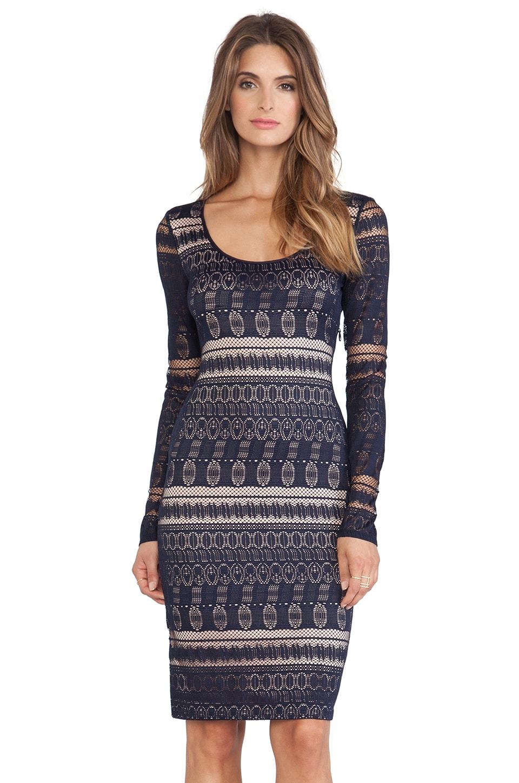 BCBGMAXAZRIA Tayna Lace Round Neck Dress in Dark Midnight