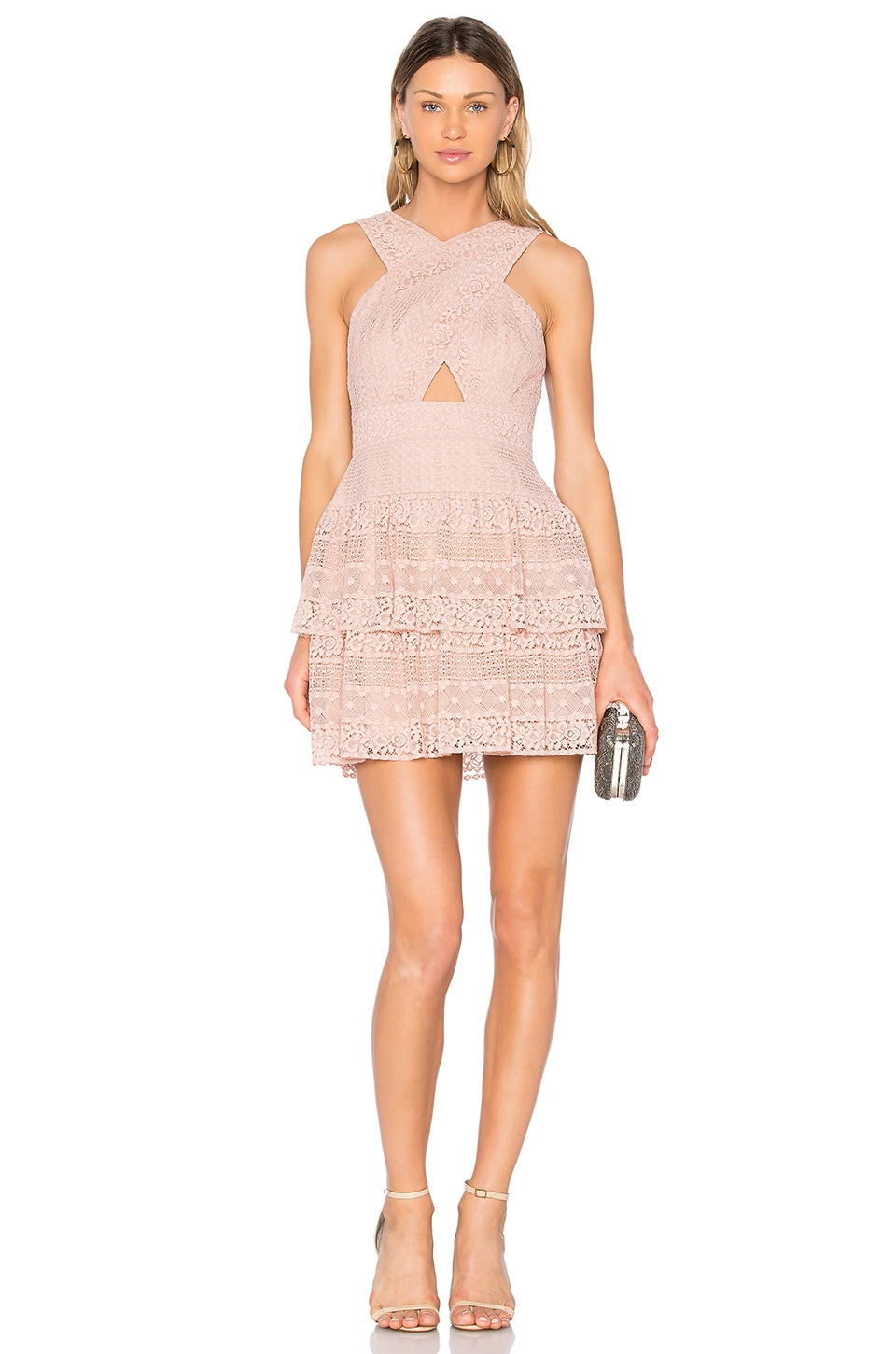 BCBGMAXAZRIA Alissa Dress in Shadow Blush