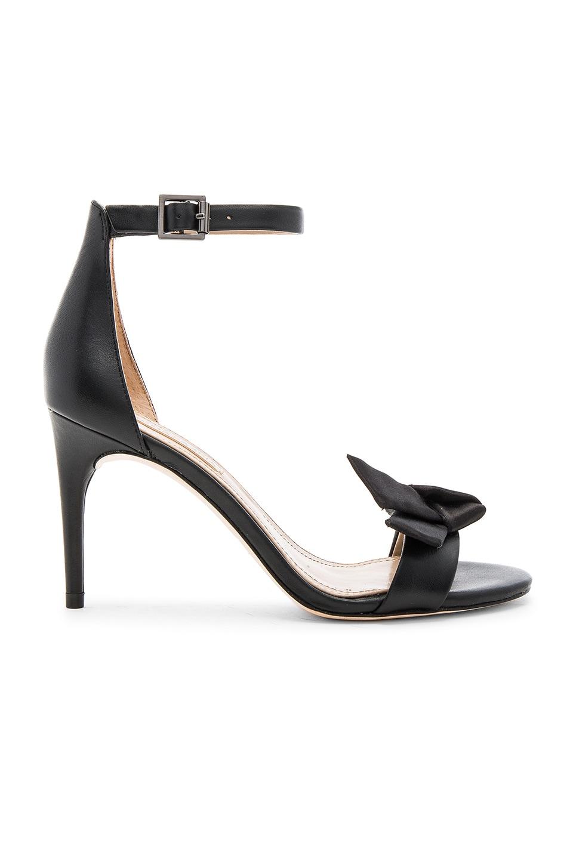 BCBGMAXAZRIA Pavli Heel in Black