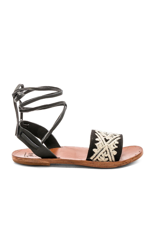 Toucan Sandal