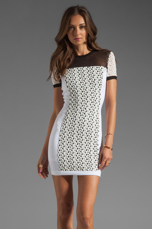 Black Halo Vanessa Stretch Gab/Crochet Lace/Textured Mesh Mini in White/White/Black