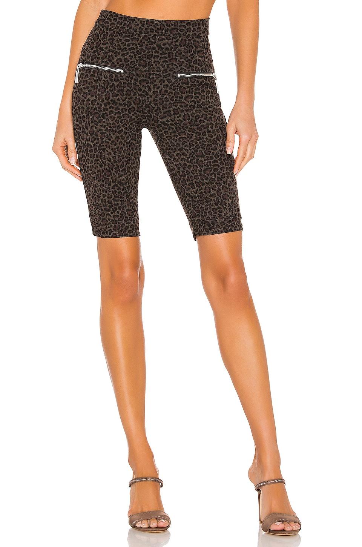 BLANKNYC Ponte Bike Short in Leopard