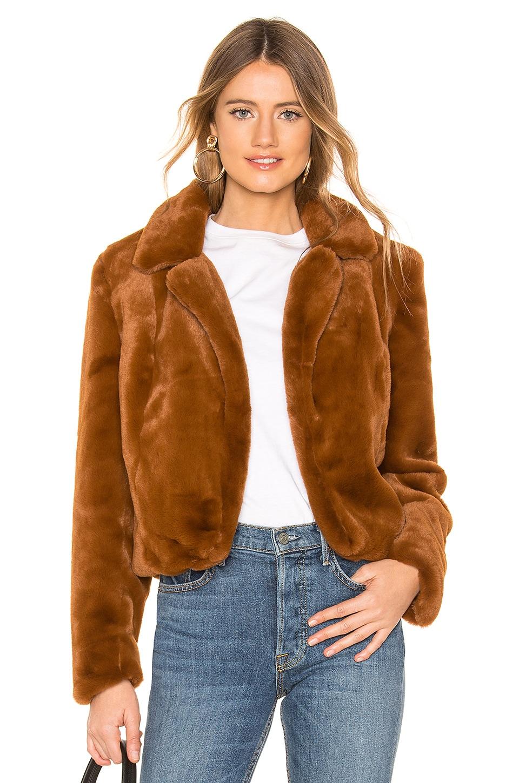 BLANKNYC Faux Fur Cropped Jacket in Milk Chocolate