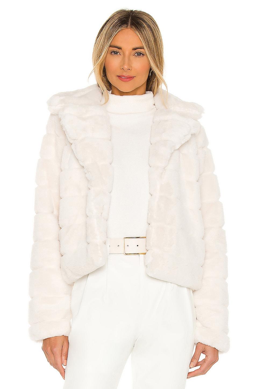 BLANKNYC Faux Fur Coat in For Rainy Day