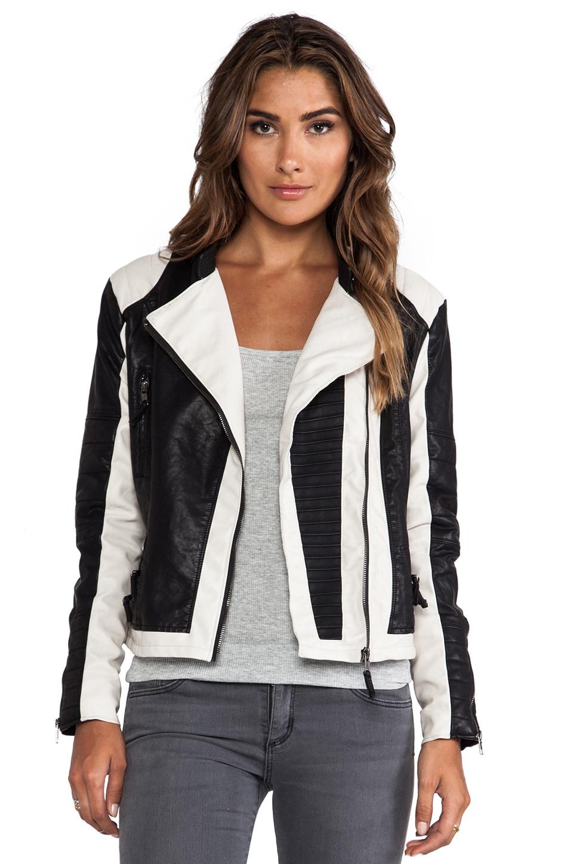 BLANKNYC Jacket in D'Hope
