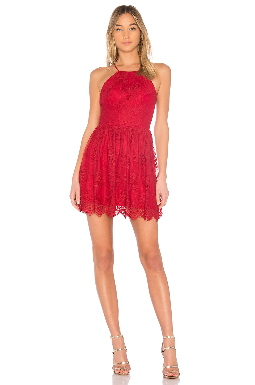 BLACK Fishnet Lace Dress