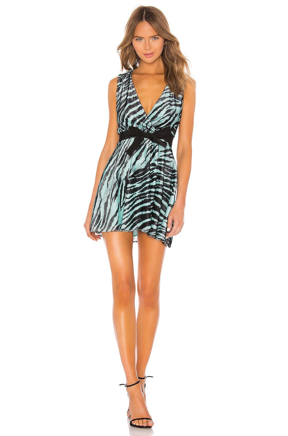BROGNANO Mini Dress in Zebra