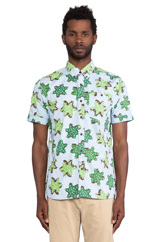 Burkman Bros. Short Sleeve Shirt in Blue & Cactus