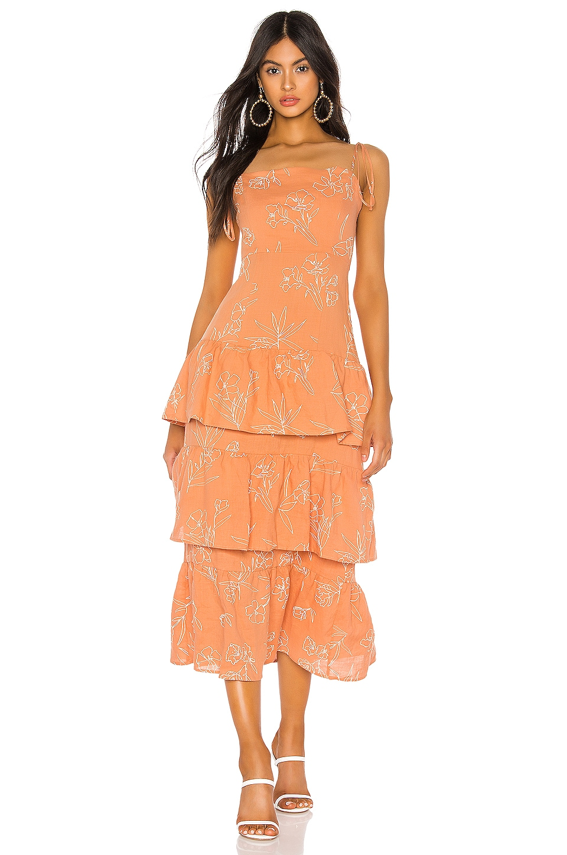 Capulet Quinn Tiered Dress in Oleander Print