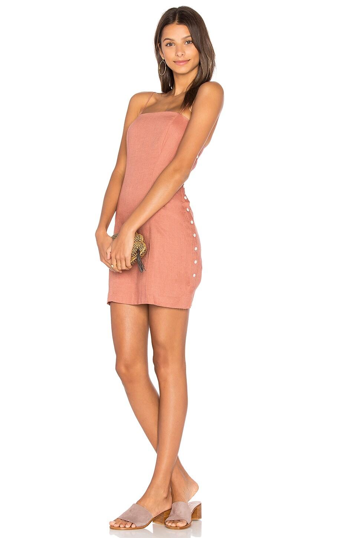 Amber Mini Dress by Capulet
