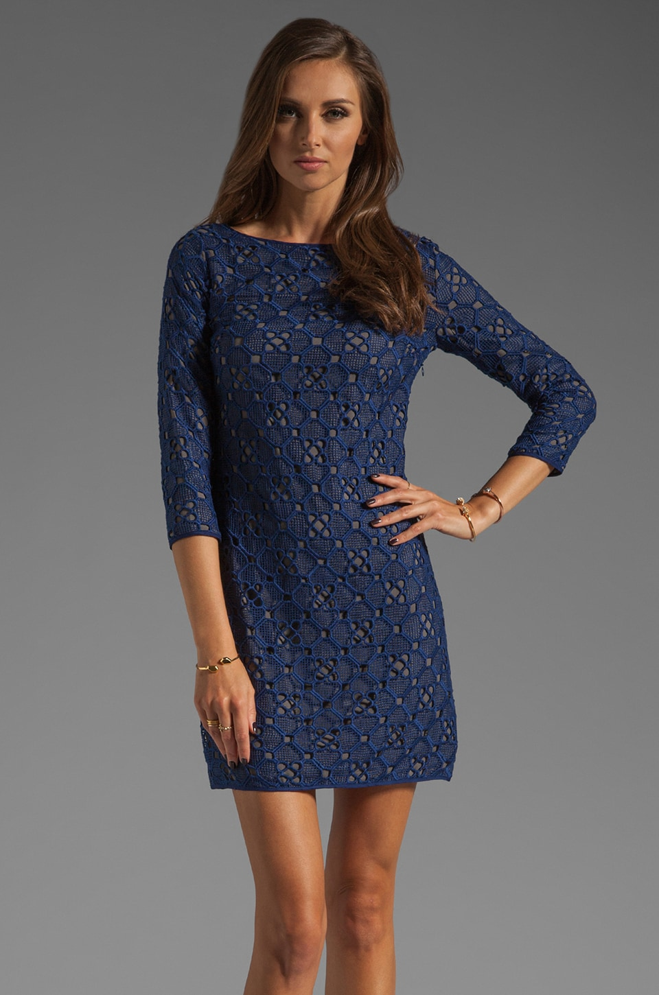 Catherine Malandrino All Over Embroidered Dress in Mineral Multi
