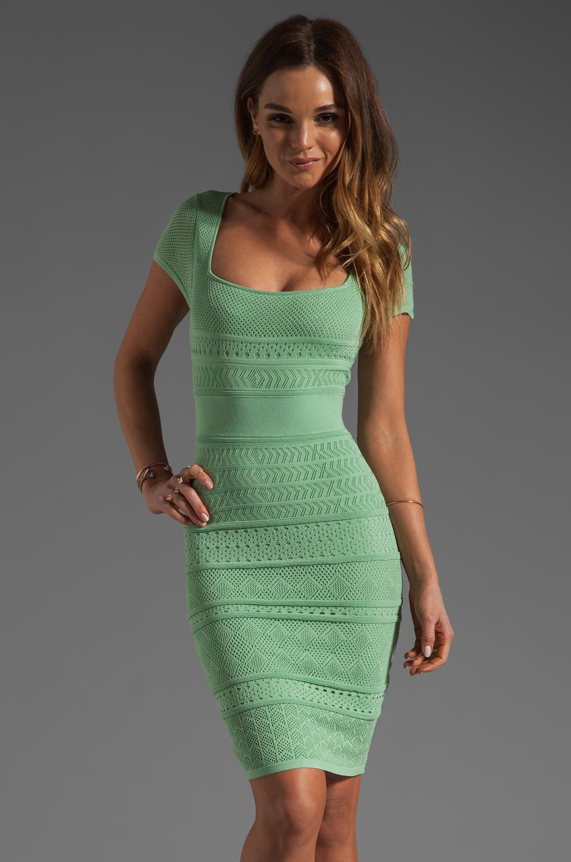 Catherine Malandrino Short Sleeve Pointelle Dress in Organic
