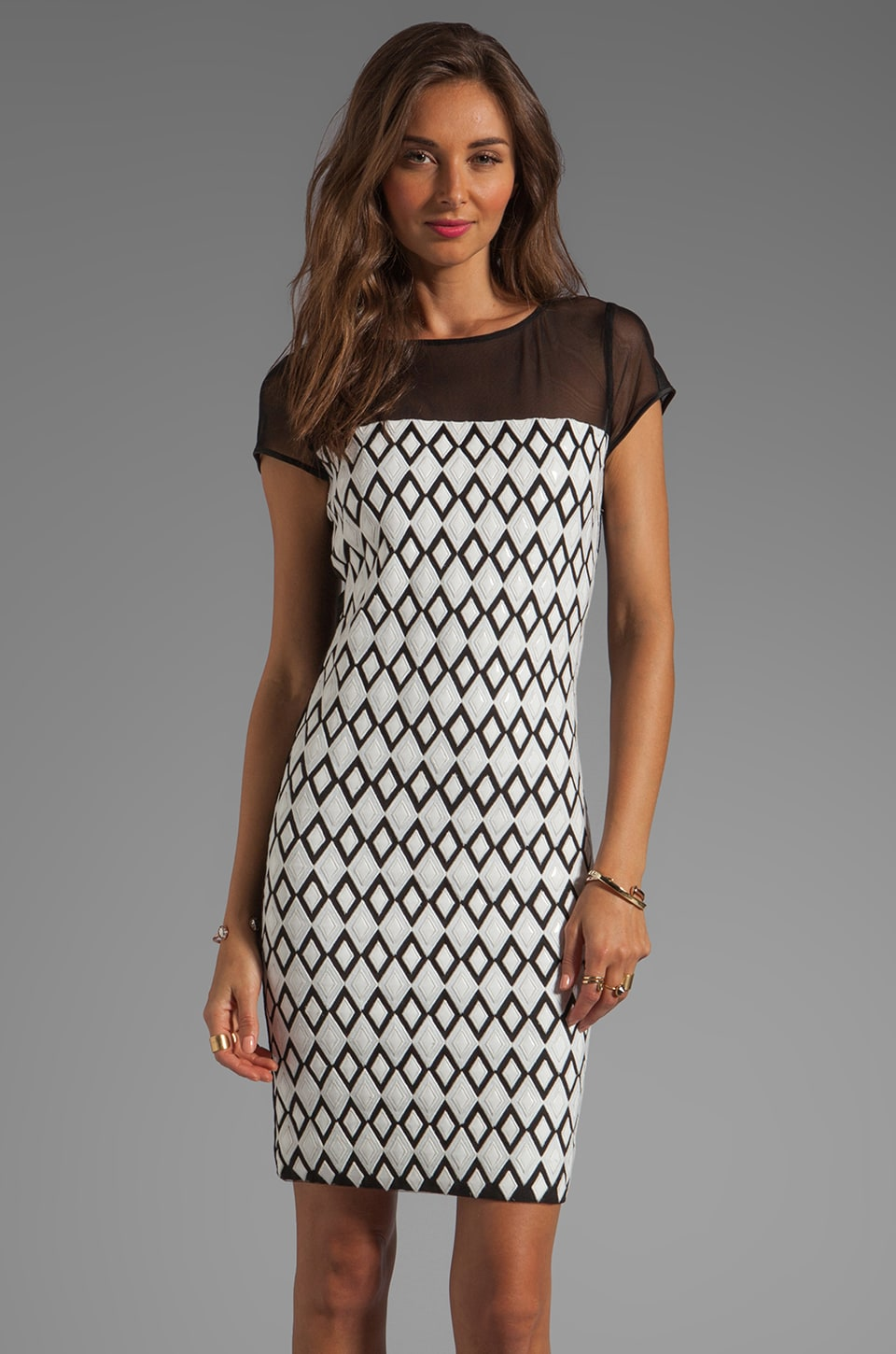 Catherine Malandrino Cut Out Mesh Dress in Black/White