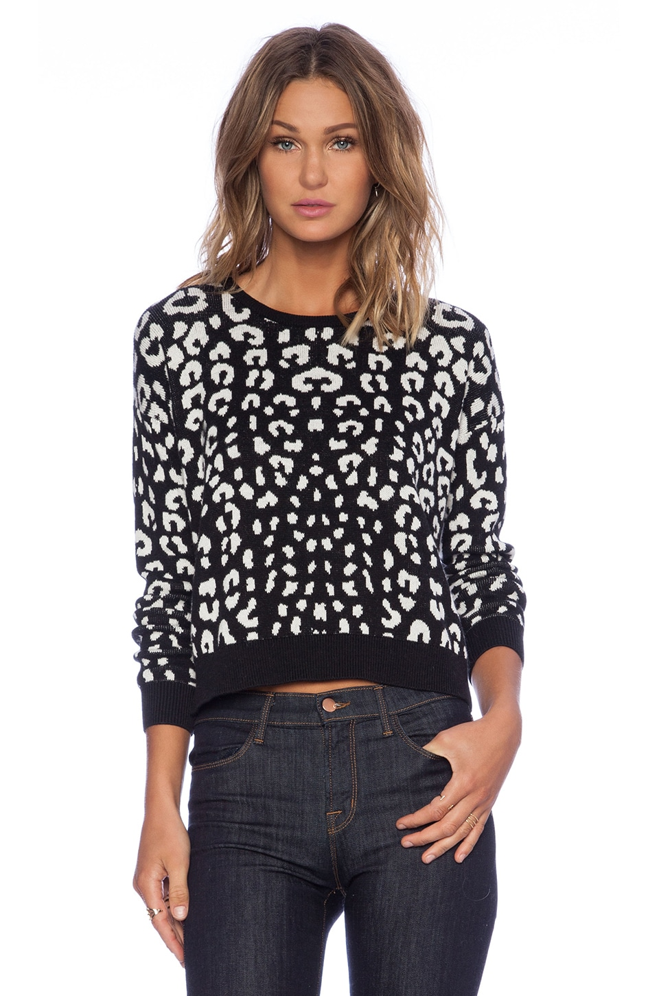 C&C California Leopard Jacquard Crop Sweater in Black