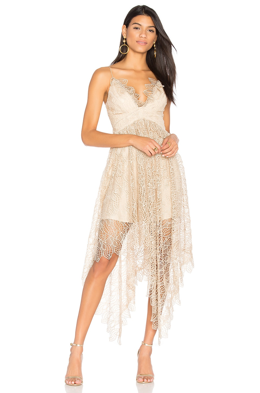 c29c211961 Acler Elan Lace Dress in Buff | REVOLVE