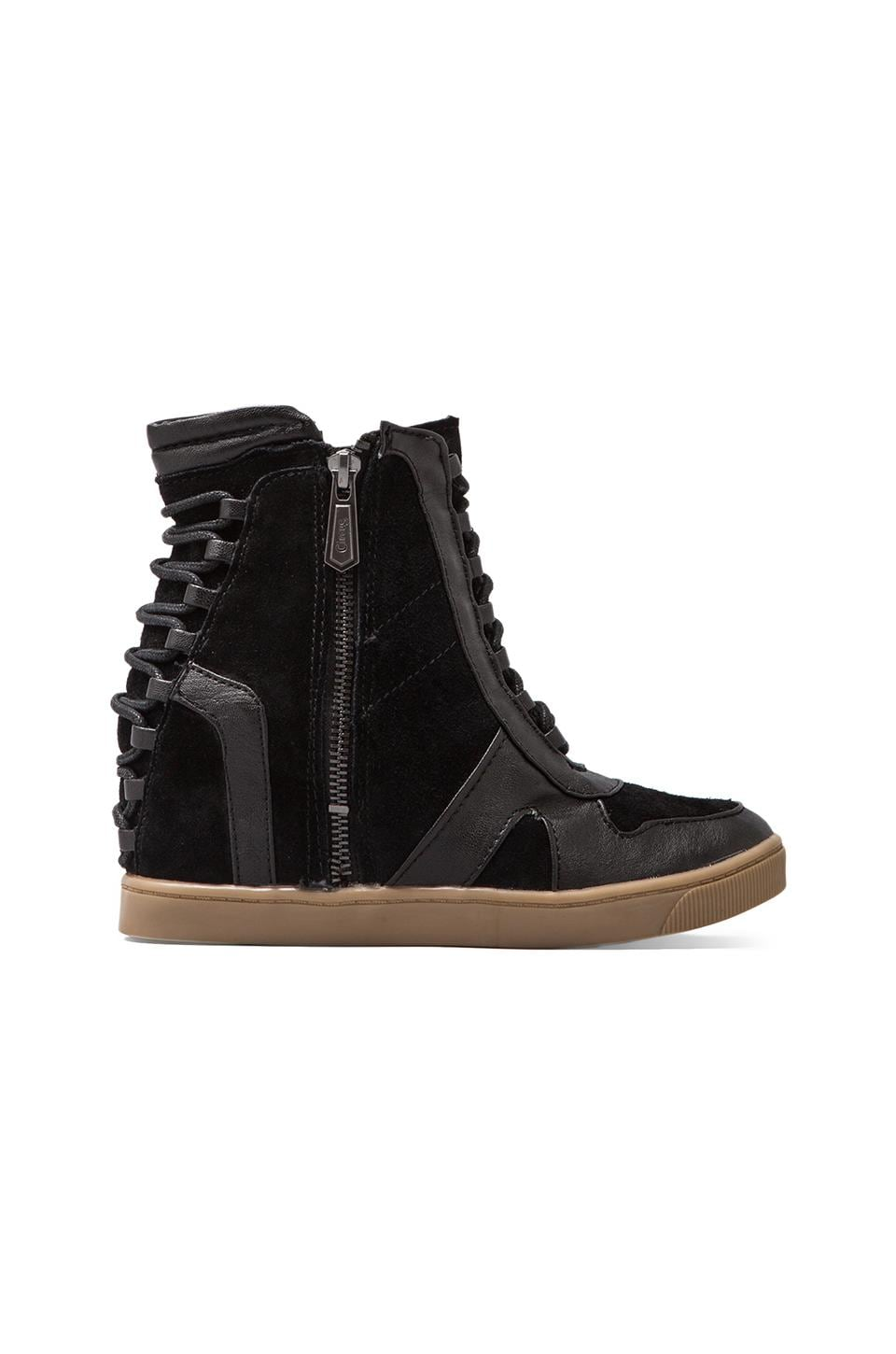 Circus by Sam Edelman Waverly Sneaker in Black