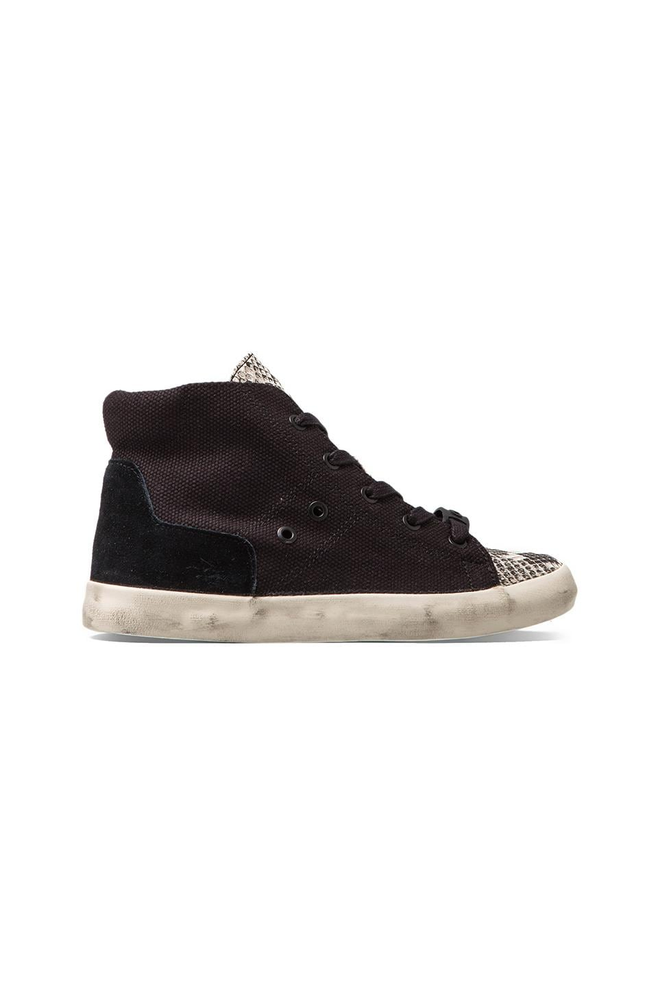 Circus by Sam Edelman Talia Sneaker in Black/Pitone