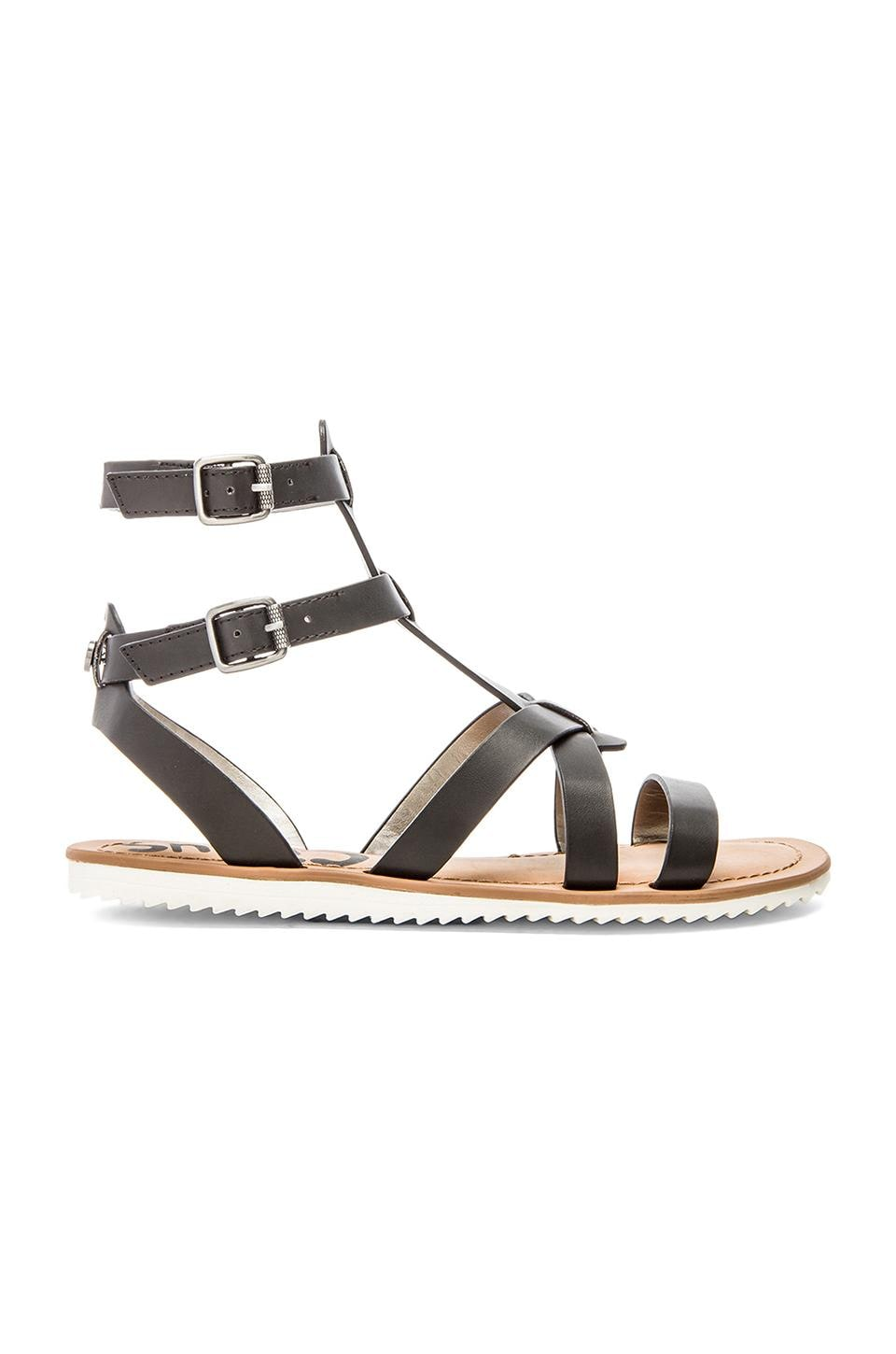Circus by Sam Edelman Selma Sandal in Black