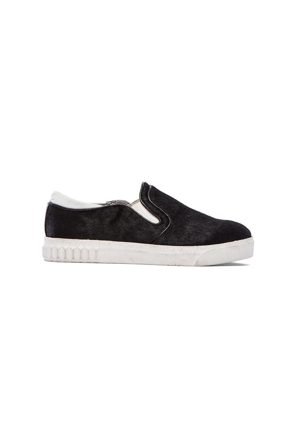 Circus by Sam Edelman Cruz Sneaker with Calf Hair in Black Brahma