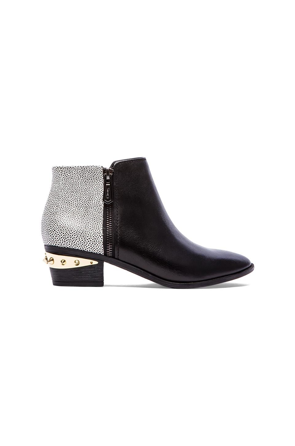 Circus by Sam Edelman Holt Bootie in Black & Black-White