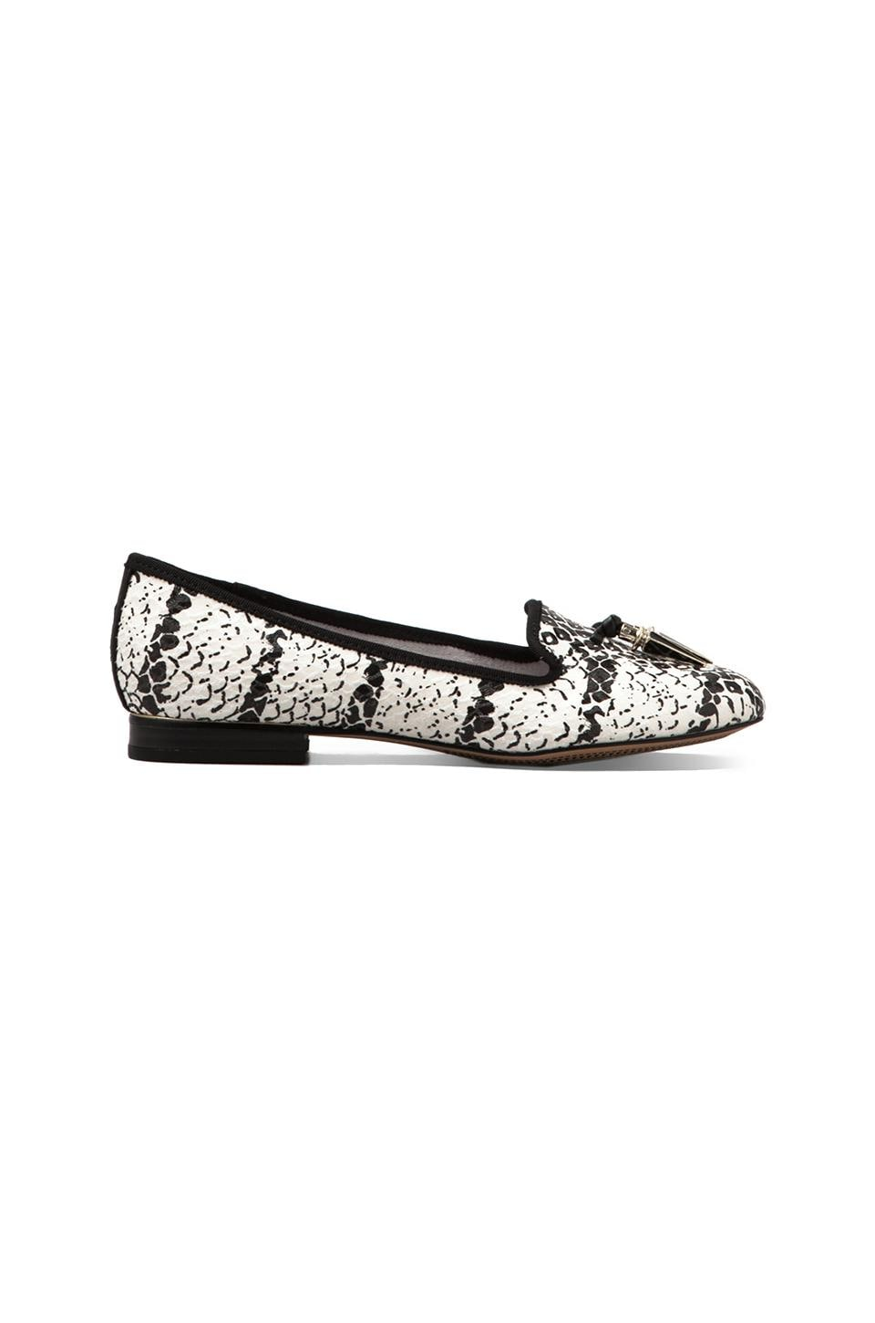 Circus by Sam Edelman Nell Loafer in Black/White Snake