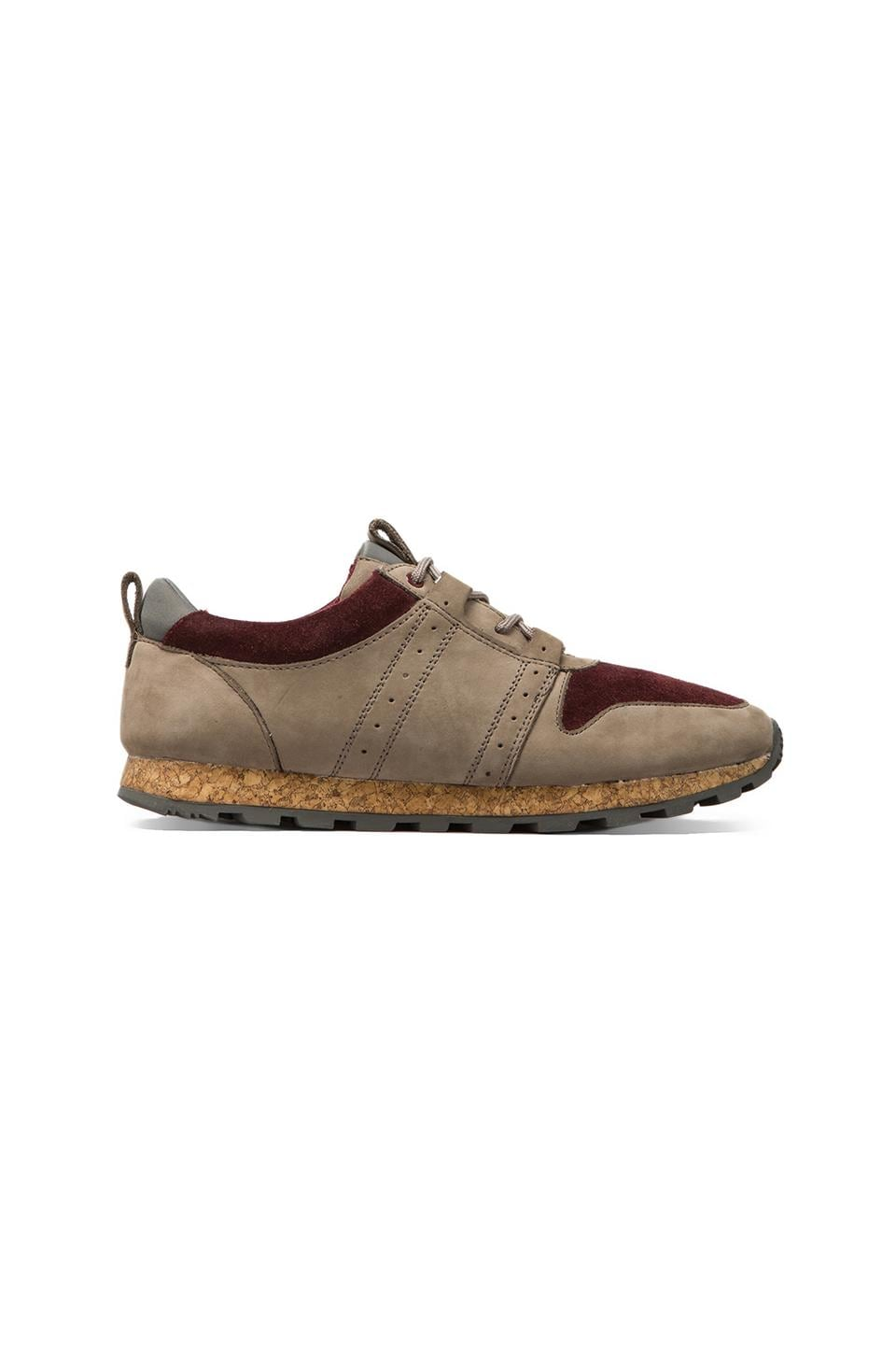 Clae Mills in Taupe Oxblood Suede