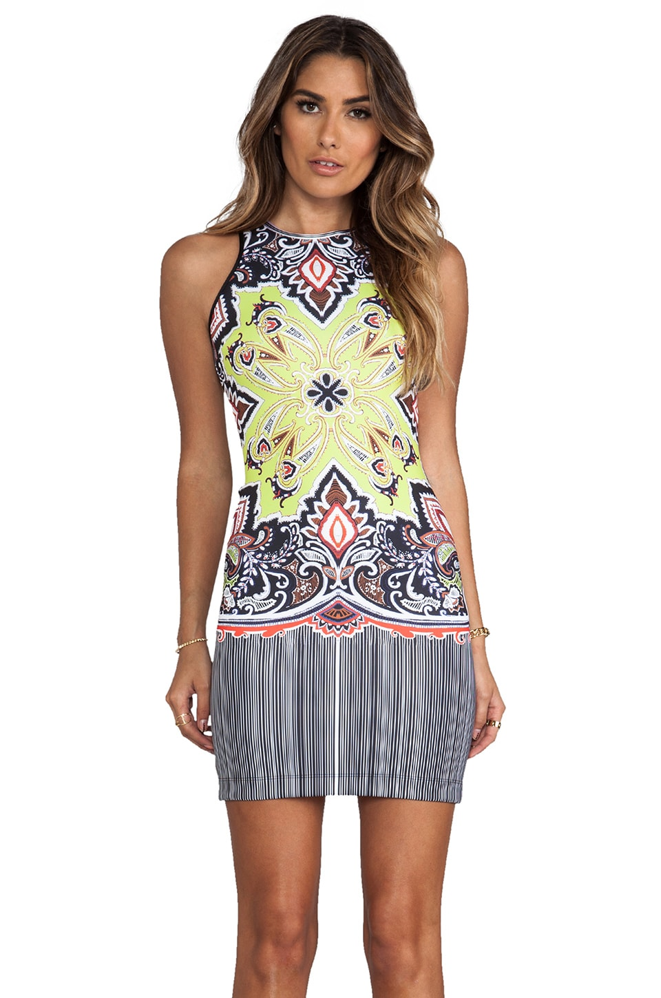 Clover Canyon Havana Paisley Dress in Multi