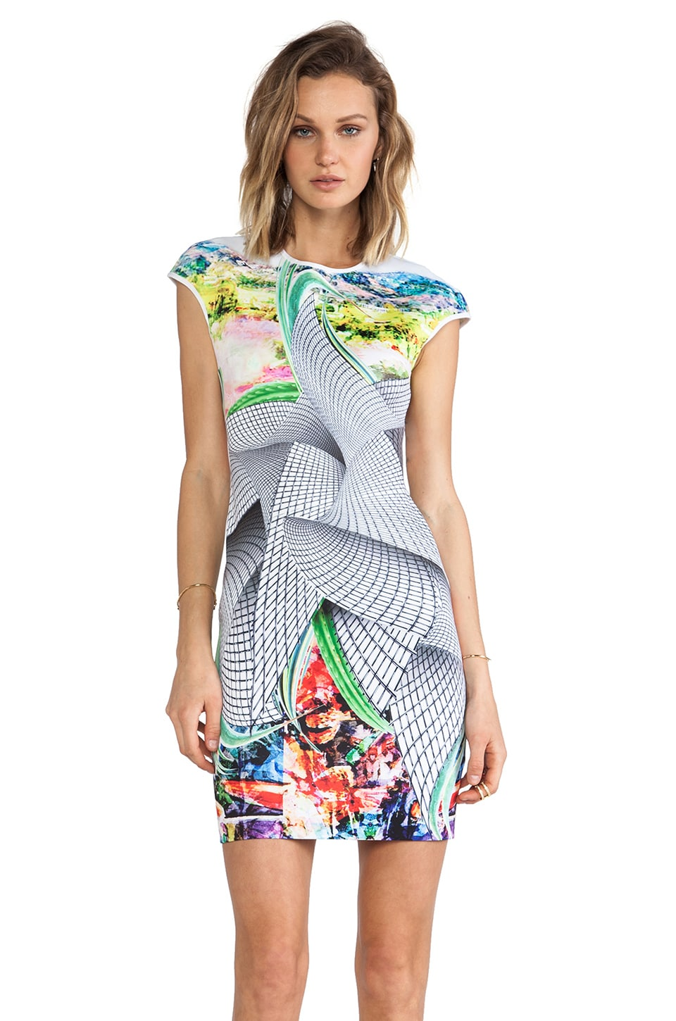 Clover Canyon Sculpture Garden Neoprene Dress in Multi