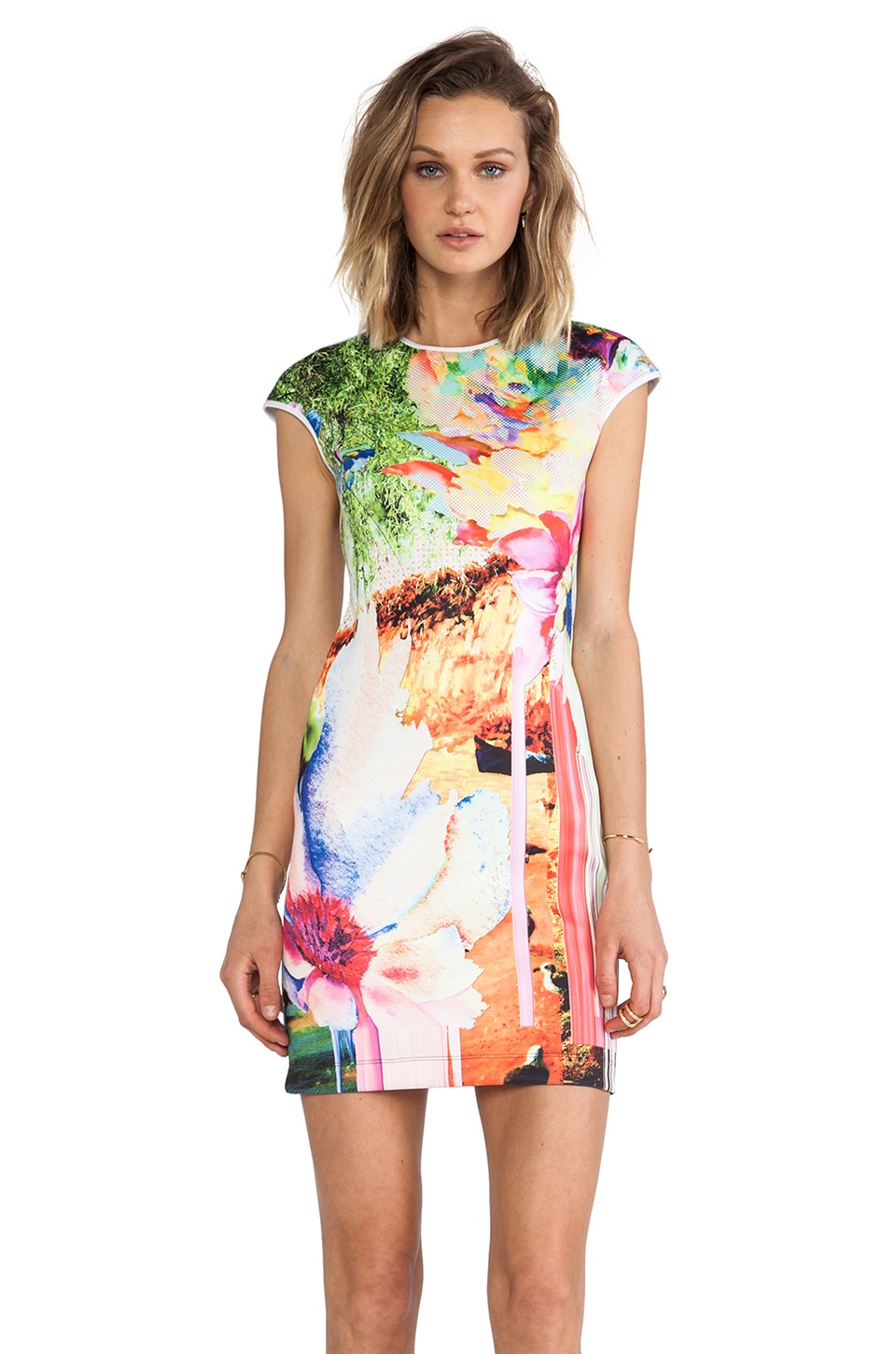 Clover Canyon Griffith Park Neoprene Dress in Multi