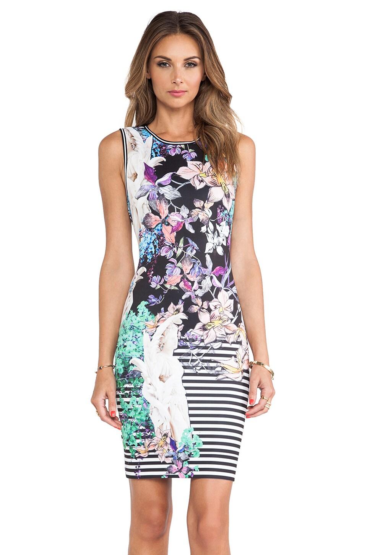 Clover Canyon Enchanted Garden Neoprene Dress in Multi