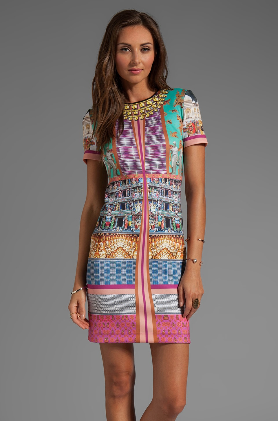 Clover Canyon Taj Mahal Neoprene Dress in Multi