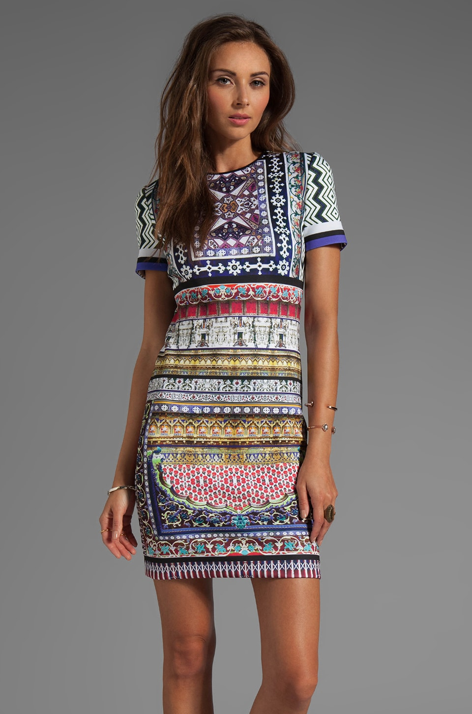 Clover Canyon City Palace Neoprene Dress in Multi