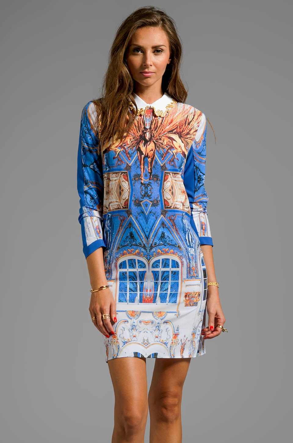 Clover Canyon Pegasus Dress in Multi