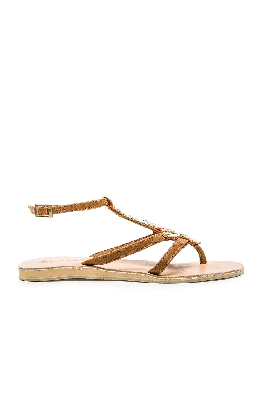 cocobelle Arrow Sandal in Brown