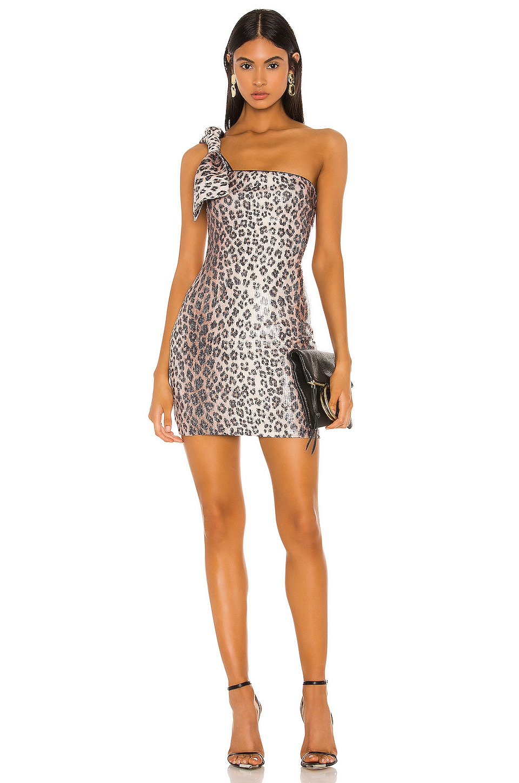 Camila Coelho Adella Mini Dress in Leopard