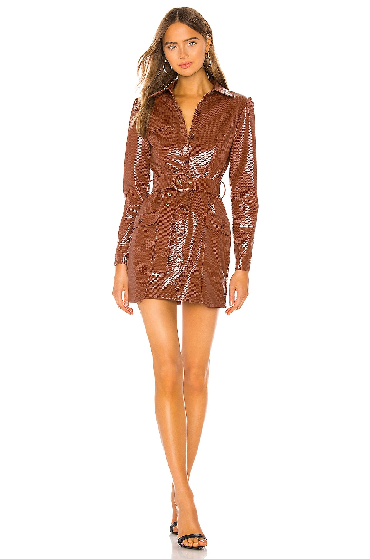 Camila Coelho Sandrina Mini Dress in Cognac