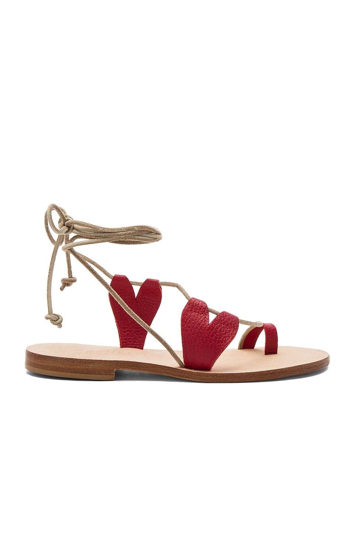 Scilla Sandal by CoRNETTI