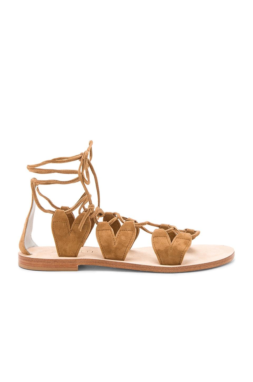 Innamorati Sandal by CoRNETTI